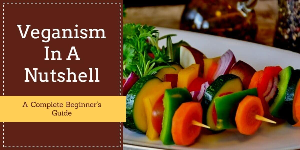 Veganism In A Nutshell: All That You Need To Know Being A Vegan 1